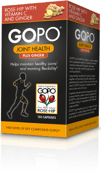 GOPO Joint Health Plus Ginger Product